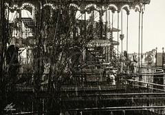 In winter (Amy Charlize) Tags: amycharlize focosocial blackandwhite monochrome carousel rain winter urban black