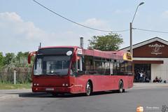 Transurb Galați DCX (Pavlos Andreas - Transport Photography) Tags: daf berkhof vdl sb250 bus autobuz galati romania amsterdam schiphol sternet gvb nederlands