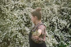 Flowers. (__J) Tags: flowers blumen anitaberberpark neukölln berlin 2019 sonyalpha7m2 sonyalpha7ii sonyilce7m2 zeiss sel2470z sonyzeiss2470f4 variotessart blurry unscharf hecke hedge sonyalpha sonyalpha7 park blüten blossom blühen blossoming