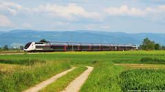 El substitut de l'Orient-Express (tunel_argentera) Tags: tren train ferrocarril railway zug eisenbahn tgv db bahn legelshurst