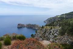 Seaview (janetfrerichs) Tags: urlaub mallorca spanien balearischeinseln mai2019 blue sky holiday seascape nature 35mm landscape colorful meer mediterranean view sigma bluesky fullframe miramar ausblick d800 bluesea mittelmeer nikond800 sigmaart