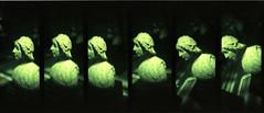 V&A (pho-Tony) Tags: lomokino lomokinosuper35moviemaker super 35 movie maker cine film handcrank lofi toy novelty plastic lomo lomography 35mm camera fuji velvia tetenal c41 crossprocessing crossprocess cross process expired expiredfilm