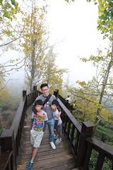 IMG_4577 (JIMI_lin) Tags: 南投 大崙山 銀杏 武岫農圃 武岫農場 武岫景觀餐廳 大崙山茶園 taiwan 茶園