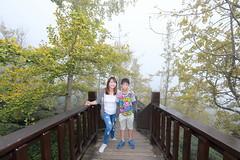 IMG_4568 (JIMI_lin) Tags: 南投 大崙山 銀杏 武岫農圃 武岫農場 武岫景觀餐廳 大崙山茶園 taiwan 茶園
