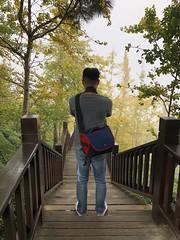 IMG_0159 (JIMI_lin) Tags: 南投 大崙山 銀杏 武岫農圃 武岫農場 武岫景觀餐廳 大崙山茶園 taiwan 茶園