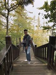 IMG_0160 (JIMI_lin) Tags: 南投 大崙山 銀杏 武岫農圃 武岫農場 武岫景觀餐廳 大崙山茶園 taiwan 茶園