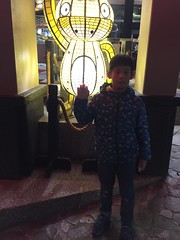 IMG_4897 (JIMI_lin) Tags: 南投 大崙山 銀杏 武岫農圃 武岫農場 武岫景觀餐廳 大崙山茶園 taiwan 茶園