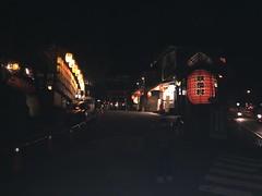 IMG_4896 (JIMI_lin) Tags: 南投 大崙山 銀杏 武岫農圃 武岫農場 武岫景觀餐廳 大崙山茶園 taiwan 茶園