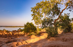 Lower Zambezi Natl Park-2019-0019 (brantleyhighline) Tags: africa europe italy location odyssey safari southafrica