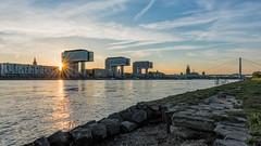 Kranhäuser in Köln im Sonnenuntergang