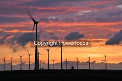 Energy evening (powerfocusfotografie) Tags: windturbine horse backlight silhouette dusk action running sun sunset evening outdoors landscape groningen holland henk nikond90 powerfocusfotografie