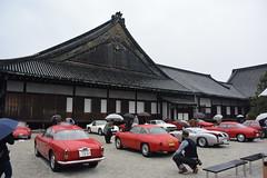 cd'ek19004 (tanayan) Tags: car automobile kyoto japan nikon v3 nijyo 二条城 京都 日本 zagato concorso deleganza alfa romeo italian castle