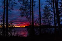 Sunset on lake seen behind trees (VisitLakeland) Tags: finland kuopiotahko lakeland summer auringonlasku evening ilta järvi kesä kesäyö lake luonto maisema nature outdoor scenery sunset