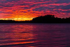 auringonlasku Jyrkkä 3 (VisitLakeland) Tags: finland kuopiotahko lakeland summer auringonlasku evening ilta järvi kesä kesäyö lake luonto maisema nature outdoor scenery sunset
