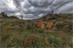 Campo en Primavera (Fernando Forniés Gracia) Tags: españa aragón zaragoza flores nubes ababoles amapolas paisaje landscape naturaleza