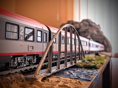 00000IMG_00000_BURST20190518122704041_COVER (Architect vision) Tags: people wagon travel traveling grass green red blue mountain river nature tree trees bridge window reflection perfect perfection wheels eisenbahn bahn train zug model layout modeleisenbahn trainlayout modeltrain home handmade colour colorful öbb db