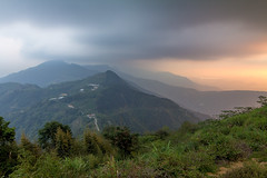 (Eddy_TW) Tags: teaplantation 山 mountains 大自然 nature 風景攝影 travel canon 台灣 taiwan 南投縣 天空 sky 武界 茶園