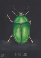 Nature calls (Klaas van den Burg) Tags: green shiny humor nature pencils leafbeetle pee