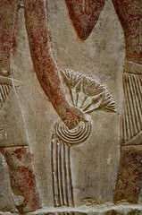 Lotus (pjpink) Tags: tomb burialchamber kegemni vizier ancient egyptian history carving detailed saqqara egypt january 2019 winter pjpink 2catswithcameras