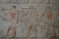 Antelope Procession (pjpink) Tags: tomb burialchamber kegemni vizier ancient egyptian history carving detailed saqqara egypt january 2019 winter pjpink 2catswithcameras