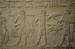 Egyptian Catfish (pjpink) Tags: tomb burialchamber kegemni vizier ancient egyptian history carving detailed saqqara egypt january 2019 winter pjpink 2catswithcameras