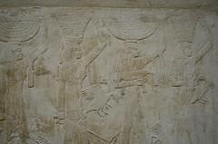 Abundance (pjpink) Tags: tomb burialchamber kegemni vizier ancient egyptian history carving detailed saqqara egypt january 2019 winter pjpink 2catswithcameras