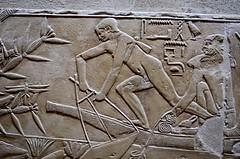 Fishing (pjpink) Tags: tomb burialchamber kegemni vizier ancient egyptian history carving detailed saqqara egypt january 2019 winter pjpink 2catswithcameras