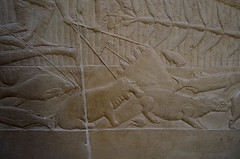 Hippo and Other Water Creatures (pjpink) Tags: tomb burialchamber kegemni vizier ancient egyptian history carving detailed saqqara egypt january 2019 winter pjpink 2catswithcameras