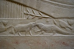 Ancient Nature Lesson (pjpink) Tags: tomb burialchamber kegemni vizier ancient egyptian history carving detailed saqqara egypt january 2019 winter pjpink 2catswithcameras