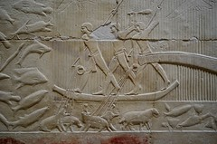 Capturing Hippos (pjpink) Tags: tomb burialchamber kegemni vizier ancient egyptian history carving detailed saqqara egypt january 2019 winter pjpink 2catswithcameras