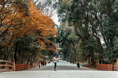 Meiji Temple park (Hadi Al-Sinan Photography) Tags: japan tokyo shinto meiji temple shrine haditravels haditravelsjapan instajapan best urban explore canon 5d 5dmarkiv