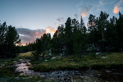 Burning in orange and pink (ScorpioOnSUP) Tags: a7iii bealpha crabtree easternsierra jmt jmt2018 johnmuirtrail sequoianationalpark sierranevada sonyalpha adventure backcountry campground forest lake landscape landscapephotography mountains nature outdoors rocks stream sunset sunsetglow thruhike wilderness