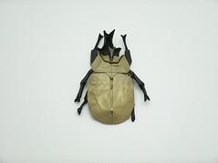 Anubis Beetle (wilson_origami) Tags: origami anubis beetle paperfolding megasoma