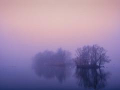 Morning light at Vallensbaeck lake. (ibjfoto) Tags: bluehour danmark denmark fog ibjensen ibjfoto natur sealand sjælland tåge vallensbaecklake vallensbaek vallensbæk vallensbæksø