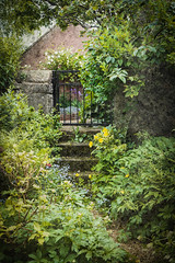 The Garden gate (judy dean) Tags: judydean 2019 35mm garden fiona gate