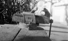 9372 (Greg.photographie) Tags: canon eos eos1n voigtlander ultron 40mm f2 foma fomapan 100 r09 standdev noiretblanc bw blackandwhite