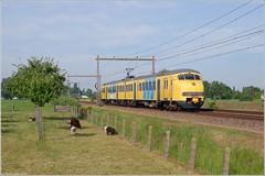 Mat'64 904, Teuge (Tiemen Schenk) Tags: mat 64 plan v stichting tteuge museumtrein teuge trein train historie