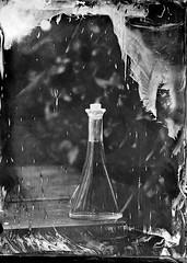 See the stars come fallin' down from the sky (Rosenthal Photography) Tags: nasplatte sonnig anderlingen fkd13x18 ferrotypie 3s industari5145210 kollodium stilleben familie garten f11 städte tintypie leaslandscape7 13x18 20180402 dörfer siedlungen mood stilllife bottle sun sunshine outdoor garden tintype aluminotype wetplate collodion fkd industar 210mm i51 f45 3sec ilford rapid fixer epson v800 spring
