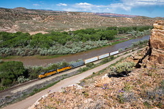 Decent Suburbia Views (Wheelnrail) Tags: train trains up union pacific emd gp60 montrose local canyon grand junction colorado gunnison river rural city view suburban railroad rail road railway locomotive west is best