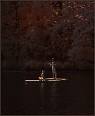 2019 06 01 Boat People Berlin IR - 040 (Mister-Mastro) Tags: berlin lake see paddling surfing 720nm ir infrared