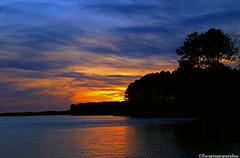 HarrisLake+1_0970_TCW (nickp_63) Tags: harris lake sunset new hill north carolina wake county sky clouds sundown trees shearon reservoir park peninsula nc