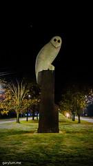The Owl Statue on Sunday morning (garydlum) Tags: owlstatue publicart canberra australiancapitalterritory australia