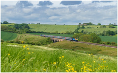 A classic location for a classic train (Mark Gowing) Tags: 43047 seatonviaduct hst class43 train