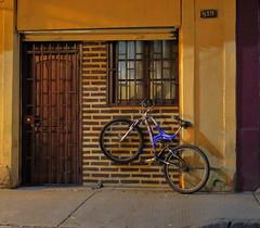 Bicicleta, Santiago de Chile (Mario Rivera Cayupi) Tags: canong5x santiagodechile fotografíacallejera streetphotography fotografíadecalle streetphotographyinchile canonpowershot bike bicicleta