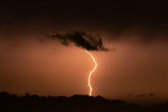 Severe Thunderstorm (Markus Branse) Tags: thunderstorm seen from fannie bay foreshore darwin northern territory australia tags hinzufügen nightstorm gewitter nooamah notthern austalien austral australie aussie oz thunder storm lightning blitze bolt unwetter wetter weer meteo weather wolken cloud clouds wolke outback hell nacht langzeitbelichtung nite night nuit himmel tier gras verschwommen