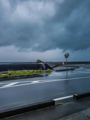 Rain on Road (Bracus Triticum) Tags: rain road kōchiprefecture 高知県 shikoku 四国 日本 japan 4月 四月 卯月 shigatsu uzuki unohanamonth 2019 平成31年 spring april bicycletriparoundshikoku