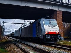 LINΞΛS 186 449 & 186 447 met staaltrein @ Genk Goederen (Avinash Chotkan) Tags: traxx railpool br186 lineas cargo belgium bombardier xpedys tunnel traction 186449