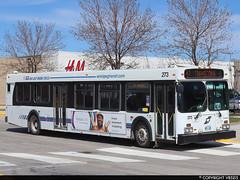 Winnipeg Transit #273 (vb5215's Transportation Gallery) Tags: winnipeg transit 2007 new flyer d40lf
