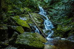 untitled-82.jpg (Oddshots) Tags: hike canada burkemountain waterfall nature forest spring brook water green peaceful life trees