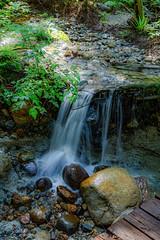 untitled-129.jpg (Oddshots) Tags: hike canada burkemountain waterfall nature spring brook water green peaceful life